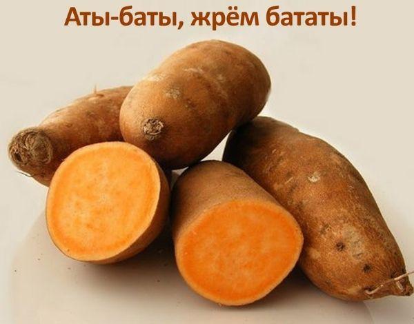 Батат или картошка?