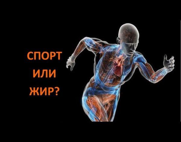 Как ускорить сброс веса занятиями спортом?