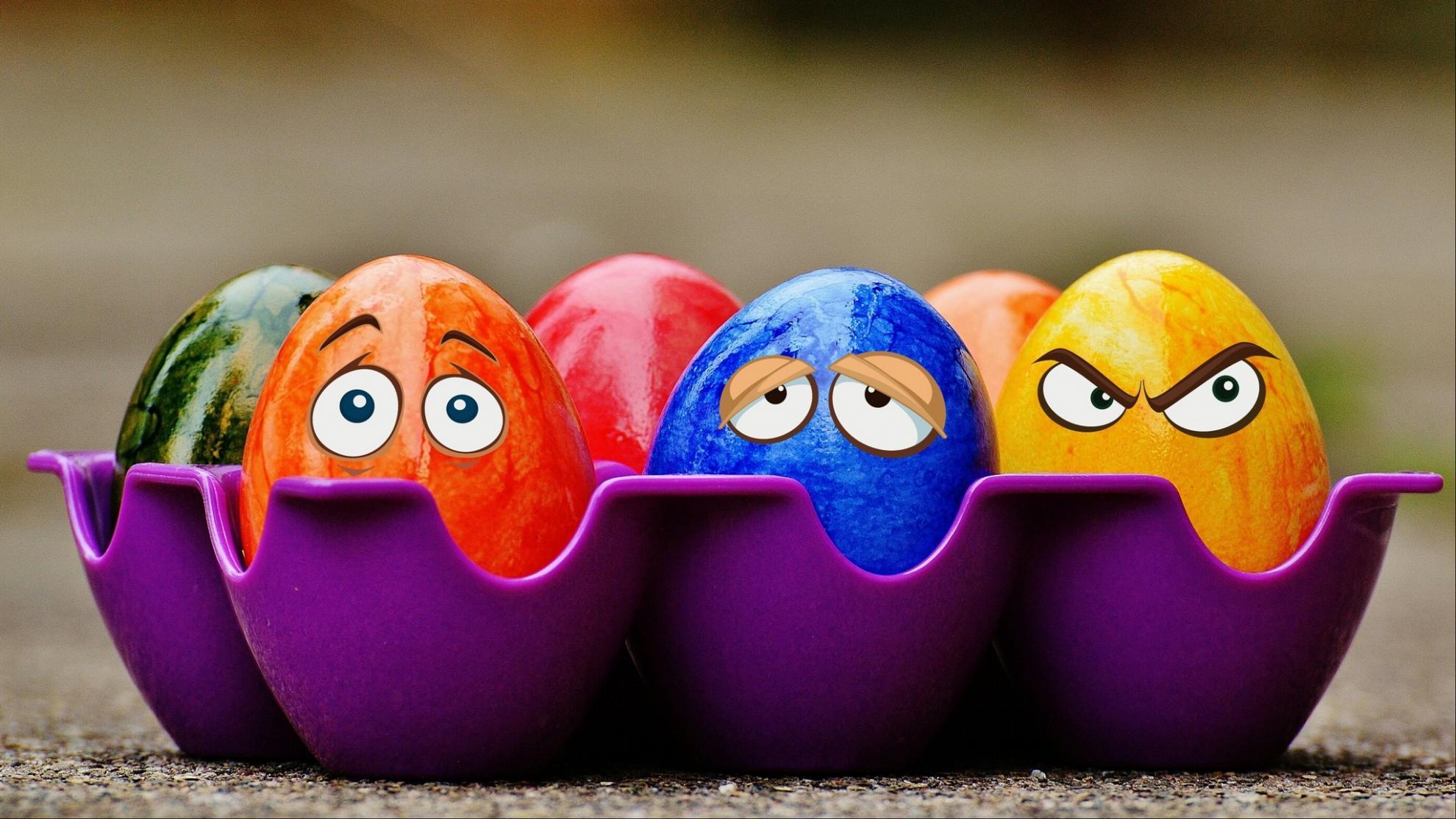 Яйца: холестерин, повышение риска рака, сальмонеллез… 13 фактов про вред и пользу